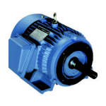 Electric Motors [AC] – IEC METRIC Frame (1PH & 3PH)