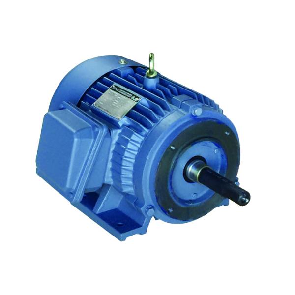 Close Coupled Pump Motor - E212145JP